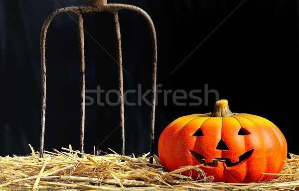Strach halloween noc stodoła festiwalu Zdjęcia stock © asturianu