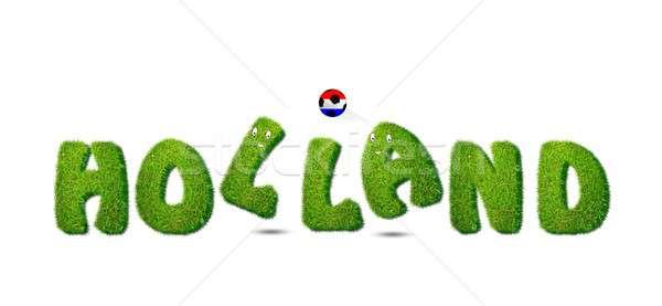 Holanda fútbol ilustración blanco textura hierba Foto stock © asturianu