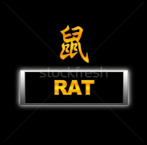 Rat. Stock photo © asturianu