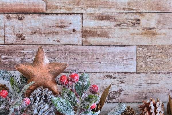 Dekorativ Weihnachten Sterne Tanne Zweig Stock foto © asturianu