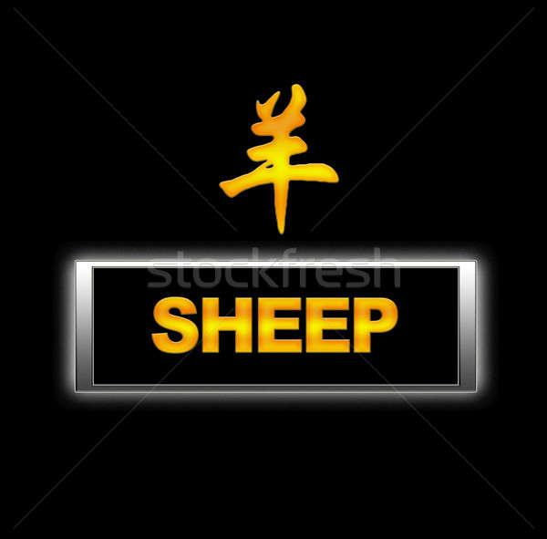 Sheep. Stock photo © asturianu