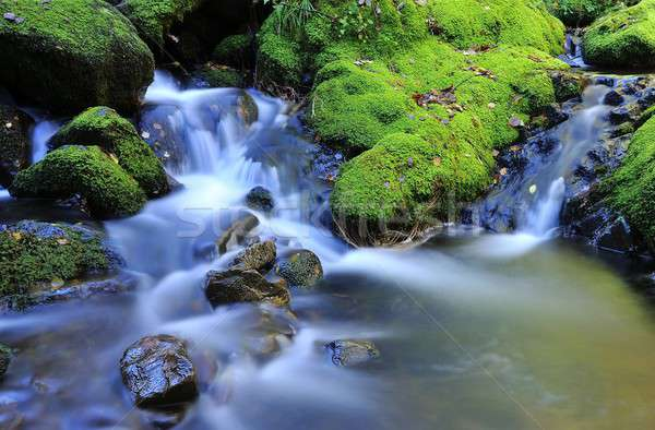 River with waterfall. Stock photo © asturianu