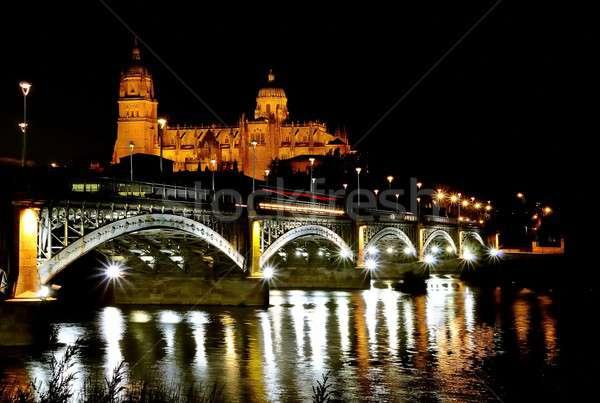 Salamanca cathedral night. Stock photo © asturianu
