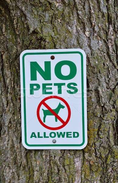 No pets allowed sign on tree. Stock photo © asturianu