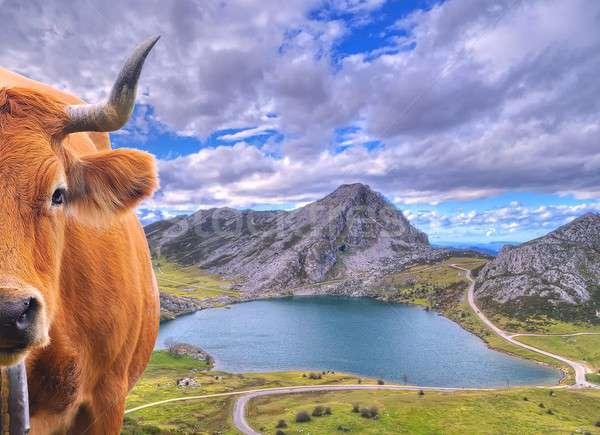 Covadonga Lakes, Asturias. Stock photo © asturianu