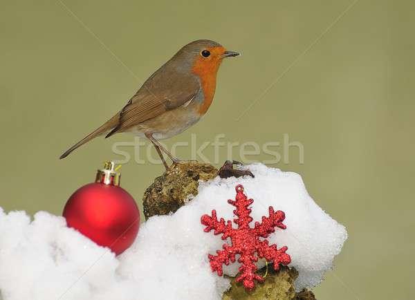 Merry Christmas Stock photo © asturianu