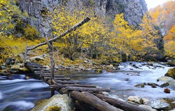 Stok fotoğraf: Görmek · ahşap · köprü · dağ · nehir · sonbahar
