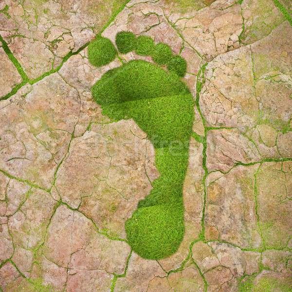 экологический след иллюстрация зеленый высушите землю Сток-фото © asturianu