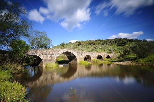 Old Bridge in Torrejon El Rubio in Caceres. Stock photo © asturianu