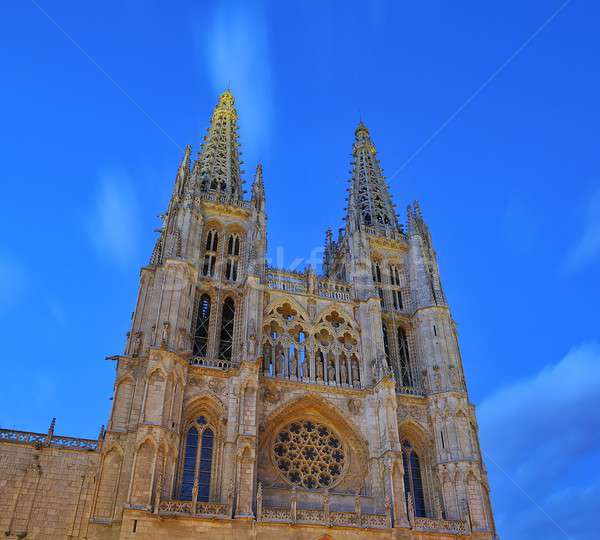 Burgos cathedral. Stock photo © asturianu