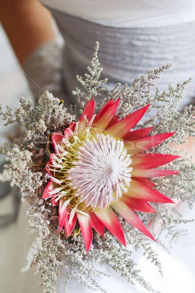花嫁 美しい 花束 花 結婚式のブーケ ストックフォト © avdveen