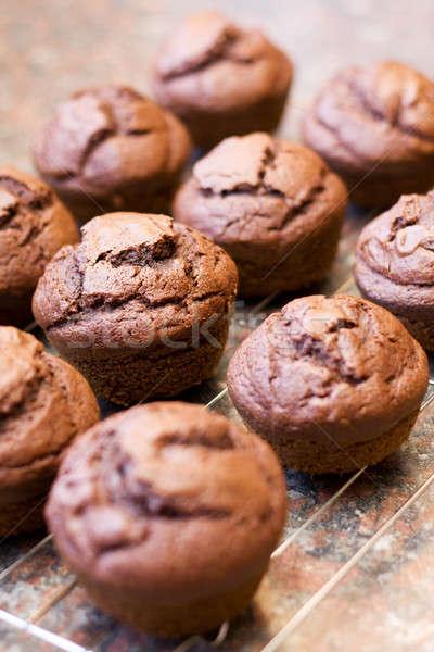 Twaalf vers gebakken chocolade muffins koeling Stockfoto © avdveen