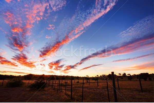 Timelapsed African sunset taken in Kgalagadi Stock photo © avdveen