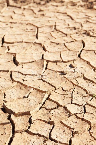 ひびの入った 泥 アップ 選択的な ストックフォト © avdveen