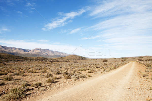 Dirt road in arid region leading away from viewer Stock photo © avdveen