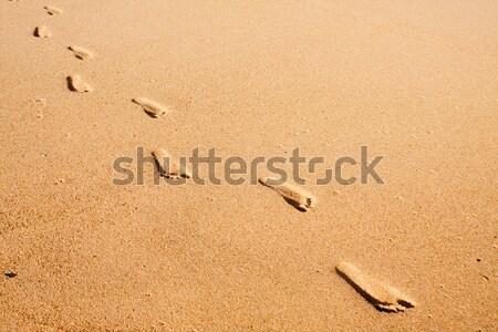 человека следов песчаный пляж ведущий далеко Сток-фото © avdveen