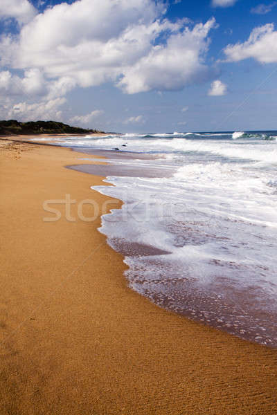 Waves crashing onto the beach Stock photo © avdveen