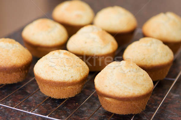 Fraîches vanille muffins refroidissement douze Photo stock © avdveen