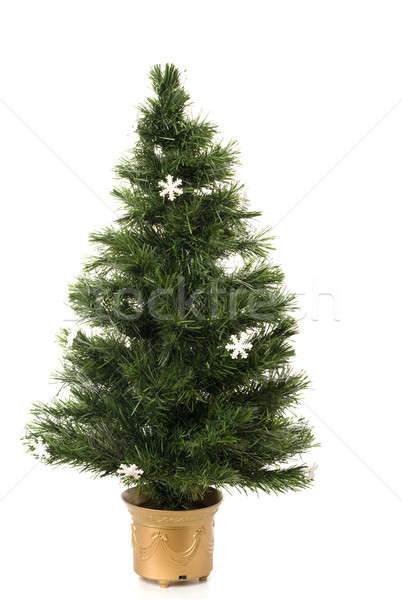 árvore de natal isolado branco fundo verde ouro Foto stock © avdveen