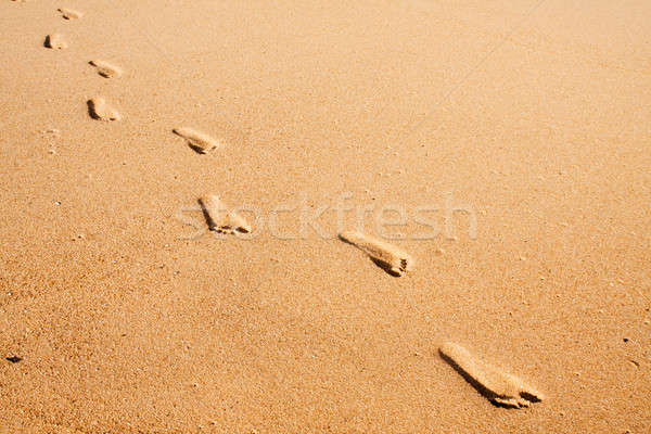 Foot prints on the beach Stock photo © avdveen