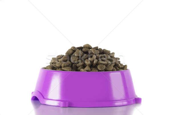 Dog food in fuchsia bowl, white studio background Stock photo © AvHeertum