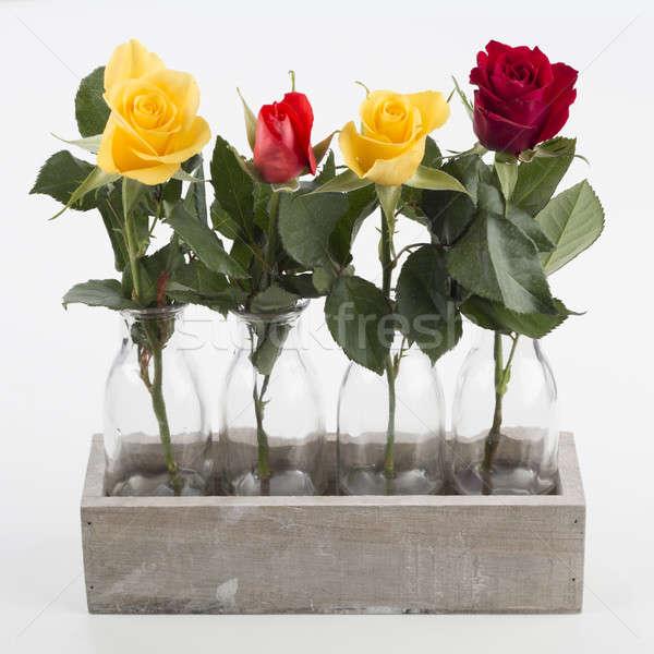 Négy rózsák izolált fából készült doboz fehér Stock fotó © AvHeertum