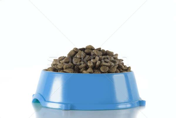 Dog food in light blue bowl, white studio background Stock photo © AvHeertum