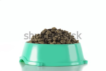 Dog food in ocean green bowl, white studio background Stock photo © AvHeertum