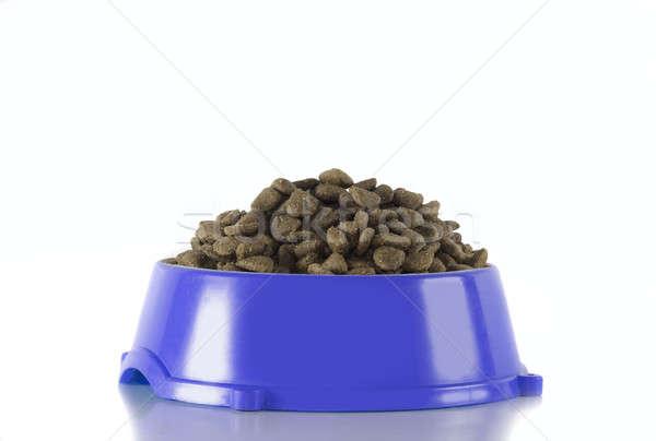 Dog food in dark blue bowl, white studio background Stock photo © AvHeertum