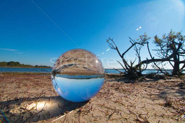Strand glas bol meisje boom hout Stockfoto © AvHeertum