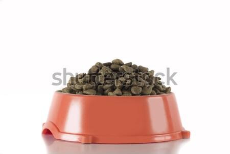 Dog food in red bowl, white studio background Stock photo © AvHeertum