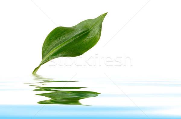 値下がり 工場 緑 反射 水 背景 ストックフォト © Avlntn