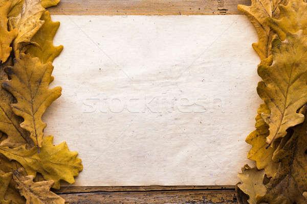 Bladeren papier houten oud papier textuur Stockfoto © Avlntn