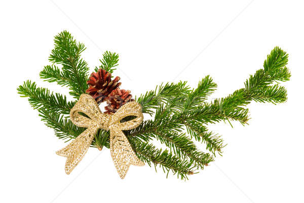 christmas decoration isolated Stock photo © Avlntn