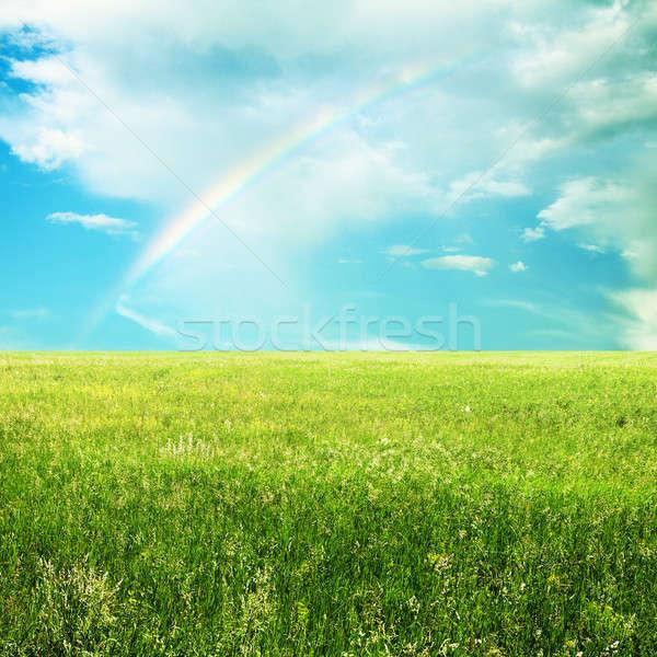 Hemel zomer velden mooie wolken natuur Stockfoto © Avlntn