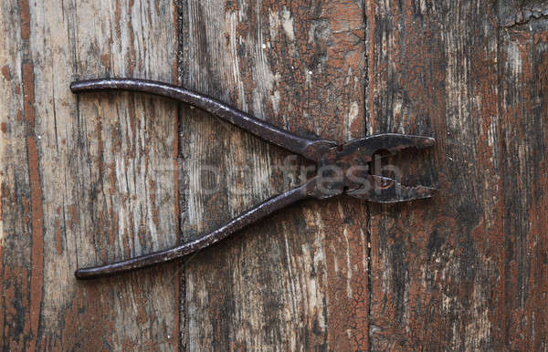 pliers Stock photo © Avlntn