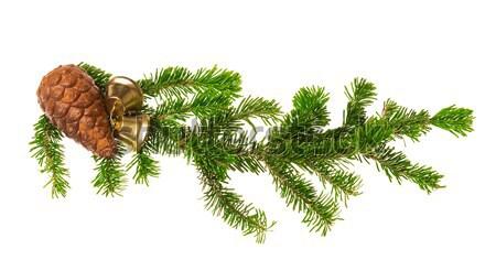 クリスマス 装飾 孤立した 白 ツリー 背景 ストックフォト © Avlntn