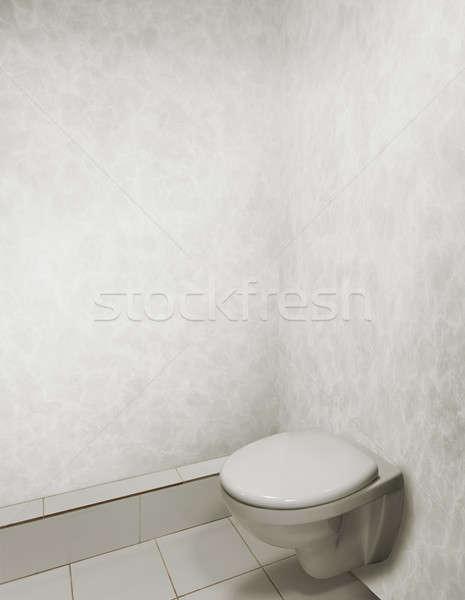 Tuvalet çanak banyo gri iç arka plan Stok fotoğraf © Avlntn