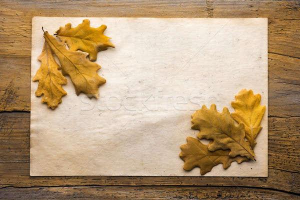 葉 紙 木製 紅葉 古い紙 テクスチャ ストックフォト © Avlntn