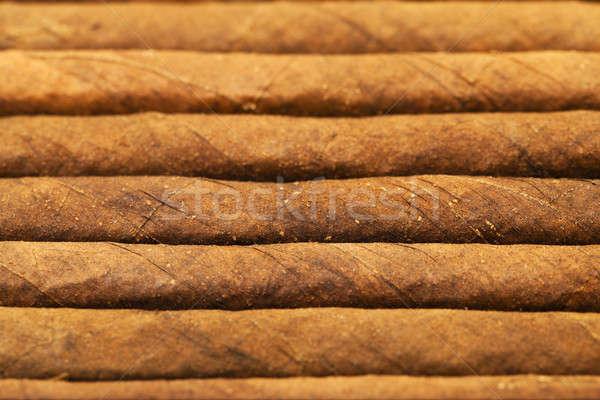 葉巻 タバコ 一緒に 小 ビジネス 自然 ストックフォト © avq