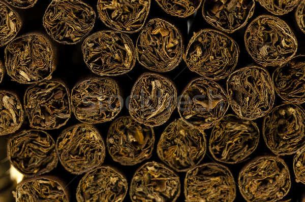 cigars  Stock photo © avq