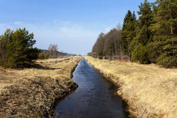 small rural river   Stock photo © avq