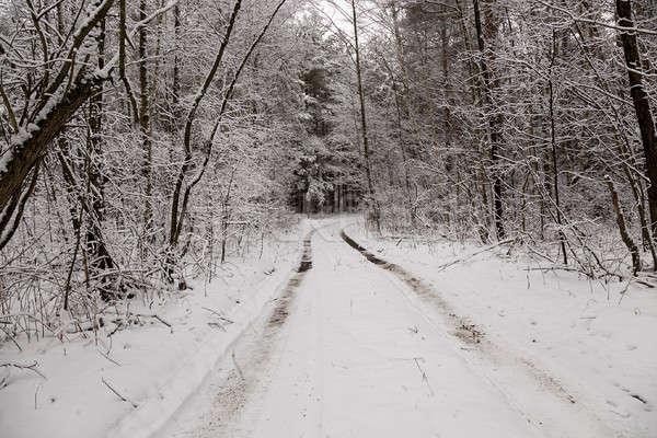 Kış yol kapalı kar kış sezonu ağaç Stok fotoğraf © avq