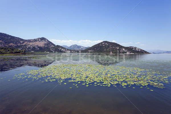 Göl Karadağ yaz yıl su orman Stok fotoğraf © avq