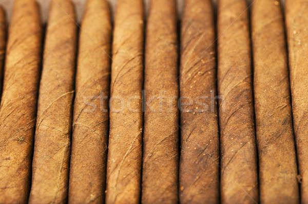 Puro küçük birlikte yaprak karanlık sigara içme Stok fotoğraf © avq