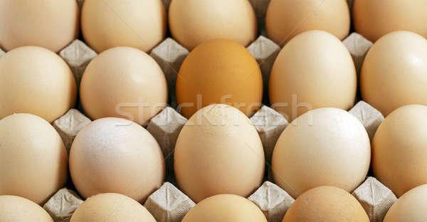 яйца небольшой фон группа пить Сток-фото © avq