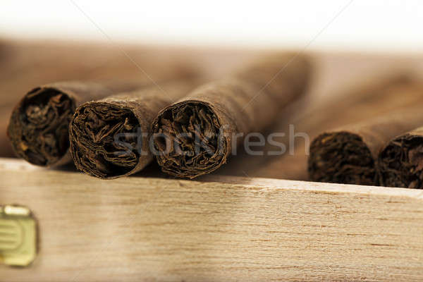 cigars in a box   Stock photo © avq
