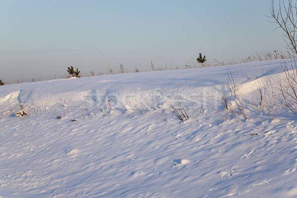 フィールド カバー 白 雪 冬季 空 ストックフォト © avq