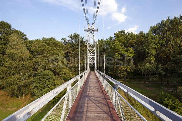 the foot bridge   Stock photo © avq
