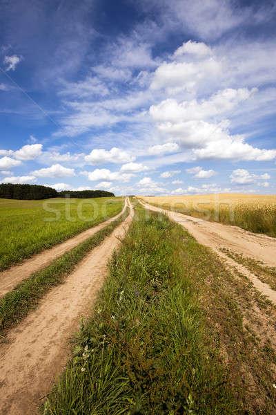 the rural road   Stock photo © avq